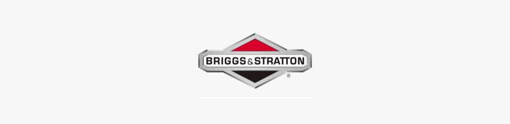 Briggs and Stratton 22HP V Twin OHV Manual