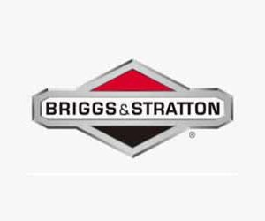 Briggs and Stratton Model 135202 Manual